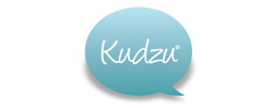 button to view The Beauty Spa reviews on Kudzu